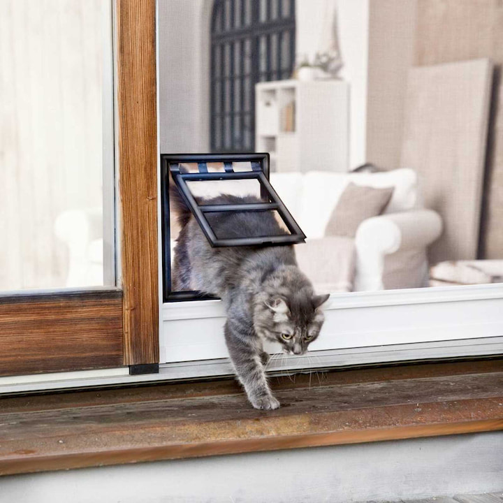 outdoor cat door