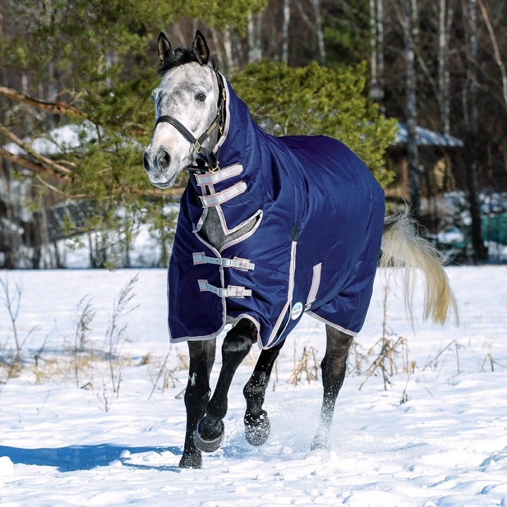 Horse Blanket to Keep Your Horse Warm & Cosy